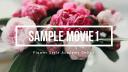 sample movie1