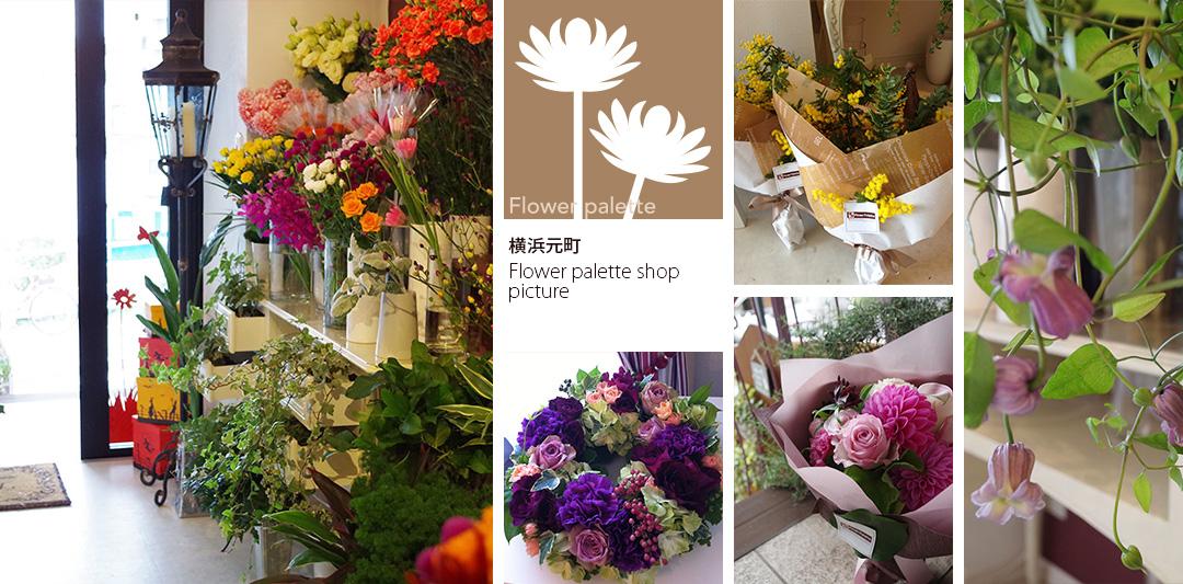 Flower palette shop picture