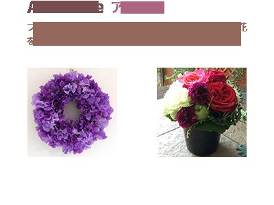 Anemone <br><span>フラワーアレンジメントが初めての方、趣味でお花を楽しみたい方向けのクラス</span>