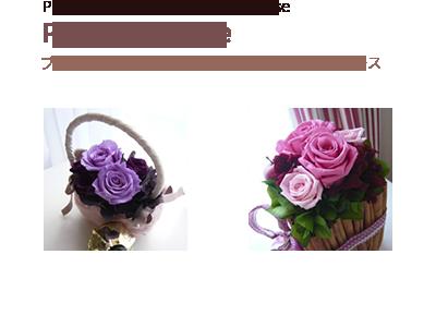 Primary Course<span>プリザーブドフラワーを初めて学ぶ方のためのコース</span>